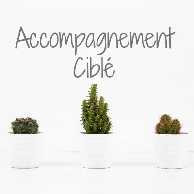 Accompagnement ciblé selon tes besoins